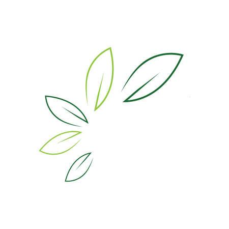 natural leaf logo vector illustration design template