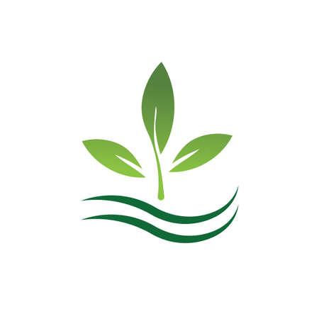 natural leaf logo vector illustration design template Reklamní fotografie - 158628503