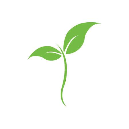 natural leaf logo vector illustration design template Reklamní fotografie - 158628516