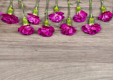 carnations: purple carnations on wooden table
