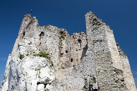 mirow: destroyed castle in Mirow, Poland