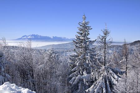 Montagnes d & # 39 ; hiver au-dessus au-dessus des nuages Banque d'images - 95119513
