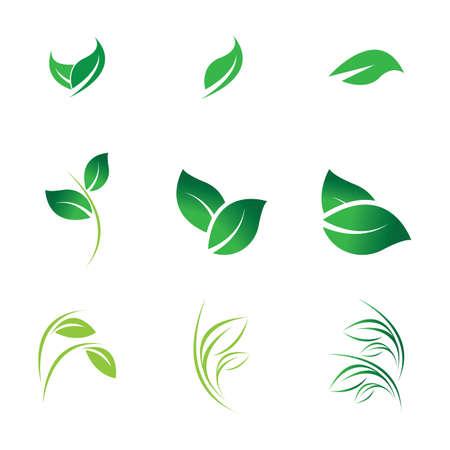 green leaf logo vector
