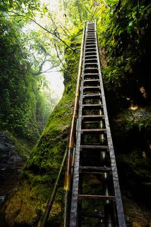 wooden stairs near a very beautiful waterfall. Halimun Salak Bogor