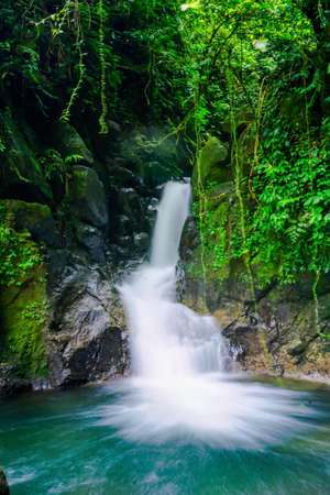 Waterfall hidden in the tropical jungle. Halimun Salak Bogor