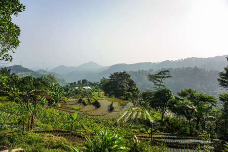 Scenic Hill Tour with beautiful scenery in Bogor, West Java, Indonesia 版權商用圖片