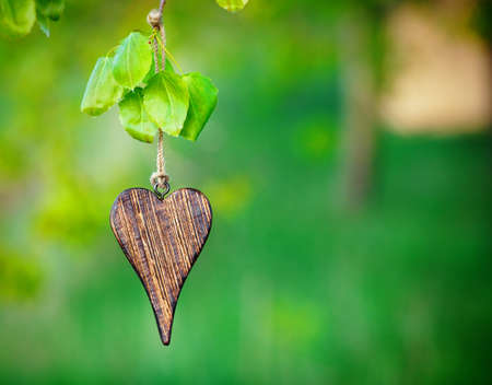 wooden shape of heart on natural green background with copy space