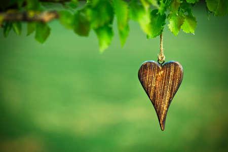 天然綠色背景與複製空間心臟的形狀木