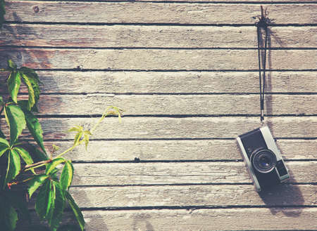 camera: Retro vintage camera hanging on wooden natural boards with green plant. Copy space Stock Photo