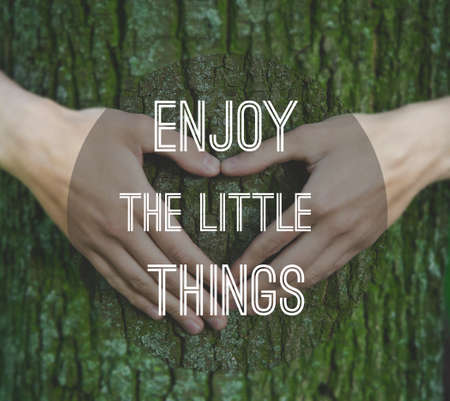 Inspirational motivating quote on natural background. Hands making a heart shape on a trunk of a tree.