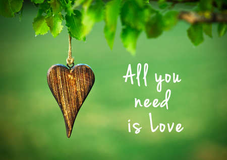 All you need is love - inspirational quote on natural green background with wooden shape of heart.