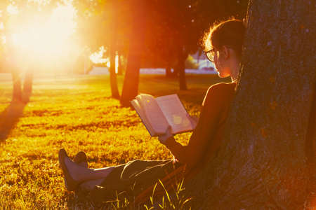 tree of knowledge: girl reading book at park in summer sunset light Stock Photo