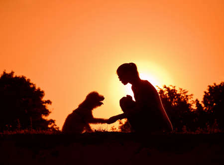silhouette of girl holding dogs paw as friendship symbol