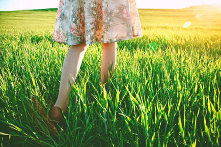 piedi nudi di bambine: girls legs walking in field in morning sun light Archivio Fotografico
