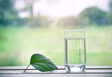 Glass of pure natural water and green leaf on natural morning background. Space for text Stock Photo