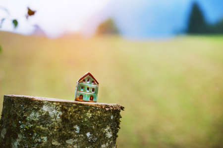 Model of toy house on felled tree as symbol Imagens