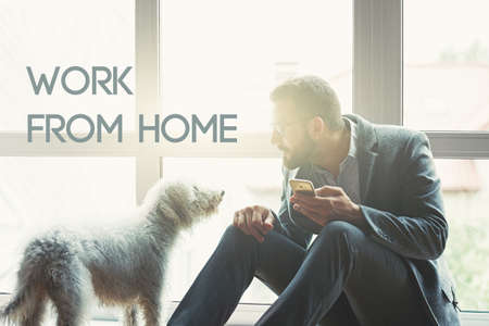 businessman with phone and cute dog and text Work from home. Home isolation and quarantine during coronavirus covid-19 pandemic.
