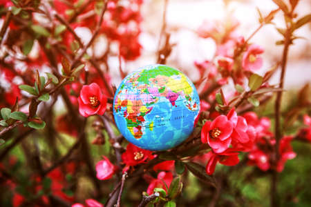 Planet earth globe model in flowers. Ecology, atmosphere and environment concept. Imagens
