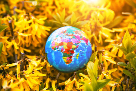 Planet earth globe model in flowers. Ecology, atmosphere and environment concept