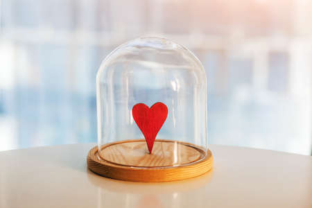 Wooden red heart under glass cap. Symbol of keeping love. Saving or protecting love concept.  Imagens