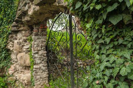Metal gate in the greenery Stock Photo