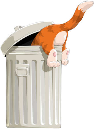 The red cat rummages in a garbage bin