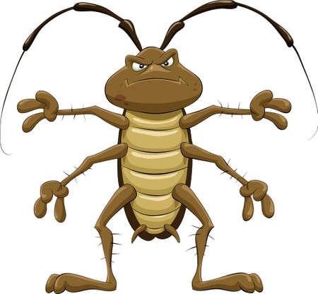 plagas: Cucaracha de dibujos animados sobre un fondo blanco