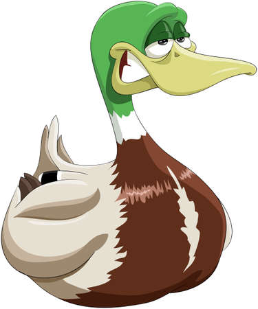 duck: Illustration cheerful and smiling drake