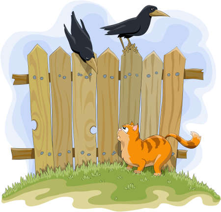 Red cat and crows on the background of the fence