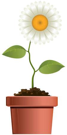 Cartoon flower in a pot Illustration