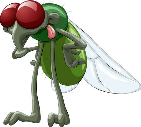 Green fly with red eyes Vector