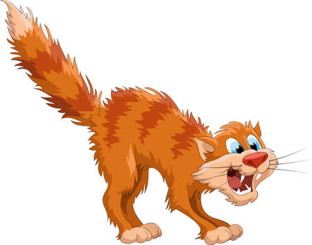 Afraid red cat on a white background, vector Stock Vector - 7804994