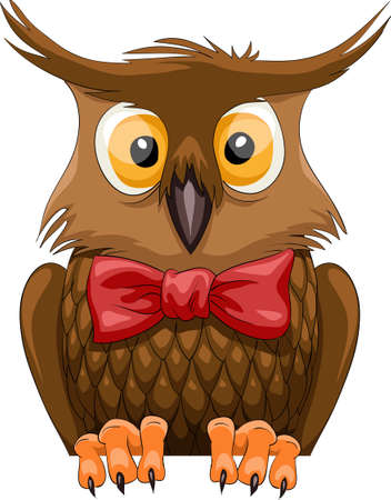 cartoon owl: Brown owl on a white background