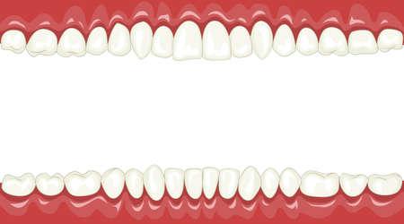 dientes caricatura: Fondo divertido con dientes de dibujos animados  Vectores