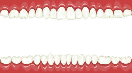 white teeth: Funny background with cartoon teeth Illustration