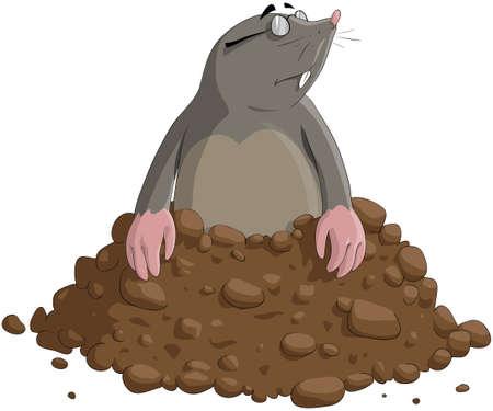 soils: La talpa ha ottenuto fuori della terra Vettoriali