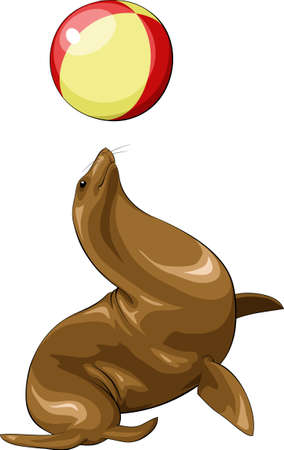 Fur seal playing with a ball Vector
