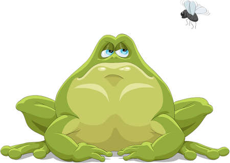 The green toad observes of a fly Stock Vector - 7905608