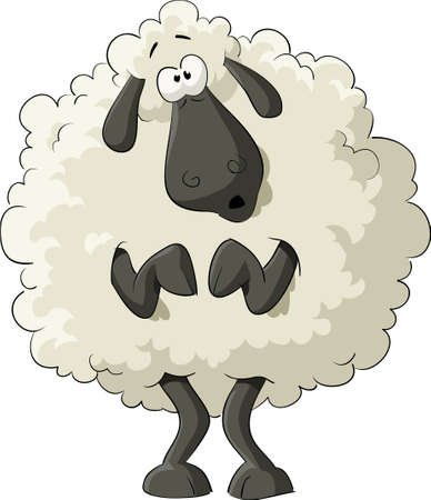 ewe: Frightened sheep on a white background