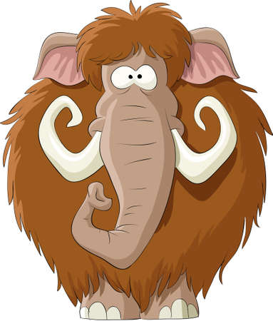 Mammoth on a white background,   illustration Illustration