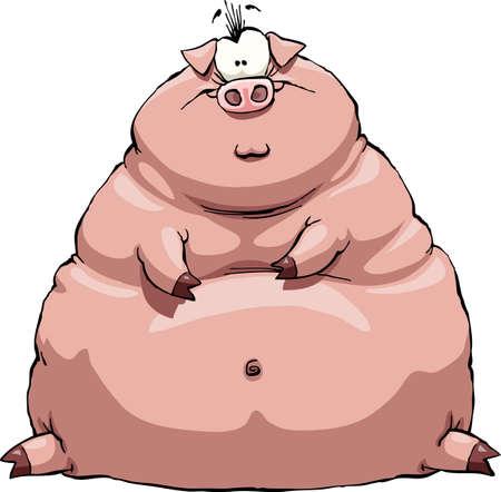 cochinos: Cerdo gruesa sobre un fondo blanco Vectores