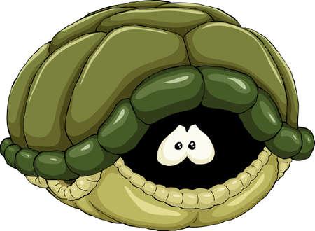 tortuga caricatura: Tortuga
