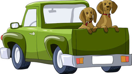 pickup: Dogs in the back of a pickup, vector illustration