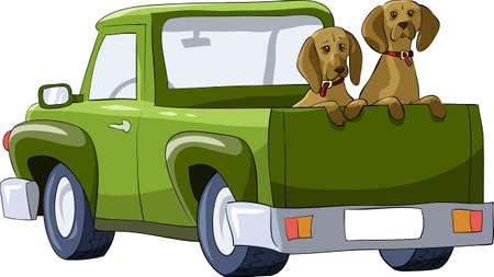 detras de: Perros en la trasera de una camioneta, ilustración vectorial