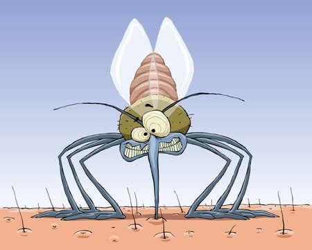 sanguisuga: Una zanzara succhia sangue alla pelle, vector
