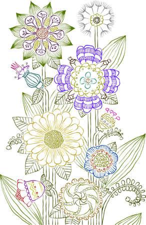 erva: Flowers on a white background, vector illustration