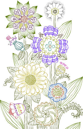 herb garden: Flowers on a white background, vector illustration