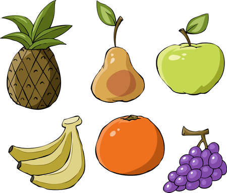 Fruit on a white background, vector illustration Vector