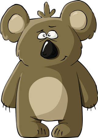 koala: Koala sobre un fondo blanco Vectores