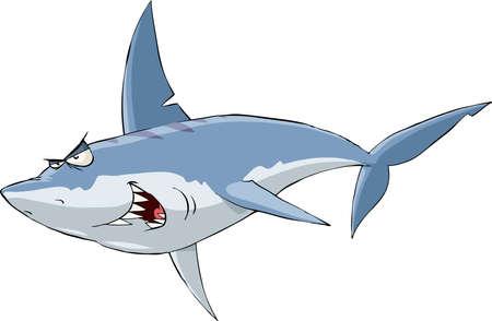 shark cartoon: Shark on a white background Illustration